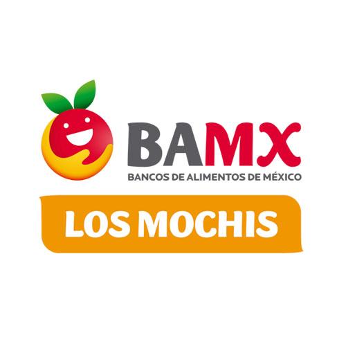 BANCO DE ALIMENTOS DE LOS MOCHIS, IAP
